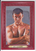 2011 Joe Calzaghe #100