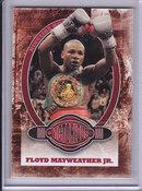 2010 Floyd Mayweather Jr