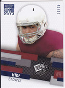 Mike Evans 13/25