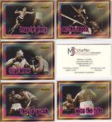 1996 Ringside Series 1 Fight Card Set